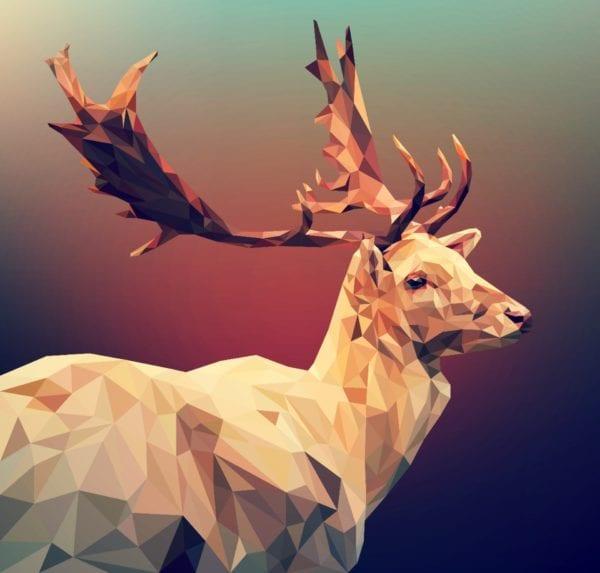 Grafisch vormgeven: voorbeeld van een ontwerp gemaakt met illustrator